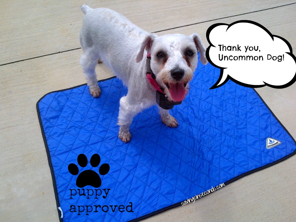 Hyperkewl Evaporative Dog Cooling Mat from The Uncommon Dog -- featured on savingsinseconds.com