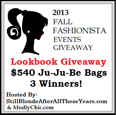 fall-fashionista-lookbook-giveaway   savingsinseconds.com