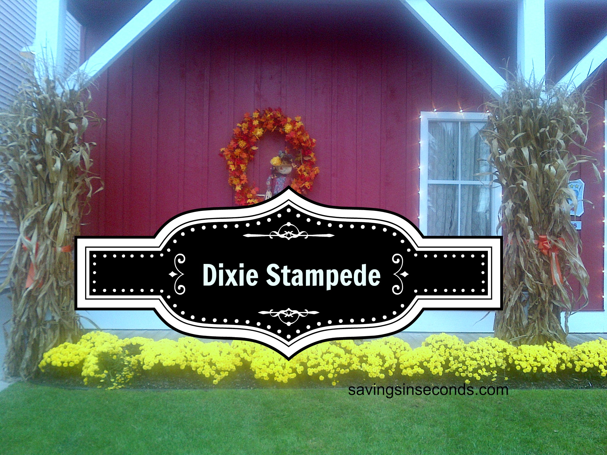 photograph relating to Dixie Stampede Coupons Printable titled Dixie stampede branson coupon codes codes / In which in direction of buy