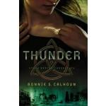 Christian dystopian Young Adult fiction - Thunder (savingsinseconds.com)