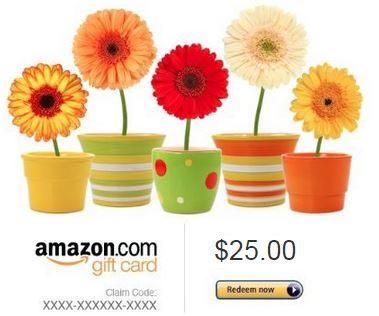 $25 Amazon #giveaway - savingsinseconds.com