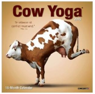 Cow Yoga - enter to win at savingsinseconds.com