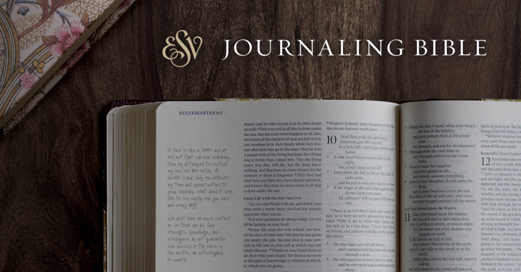 #JournalingBible #FlyBy #giveaway at savingsinseconds.com