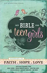 #FlyBy giveaway featuring #NIVBibleforTeenGirls - enter at savingsinseconds.com