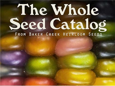 Whole-seed Catalog from Bakers Creek Heirloom Seeds #GreenThumbGiveaway hop at savingsinseconds.com