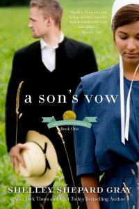 A Son's Vow review at savingsinseconds.com