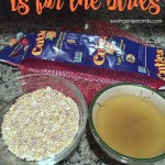 Cold weather is for the birds – DIY homemade suet cakes