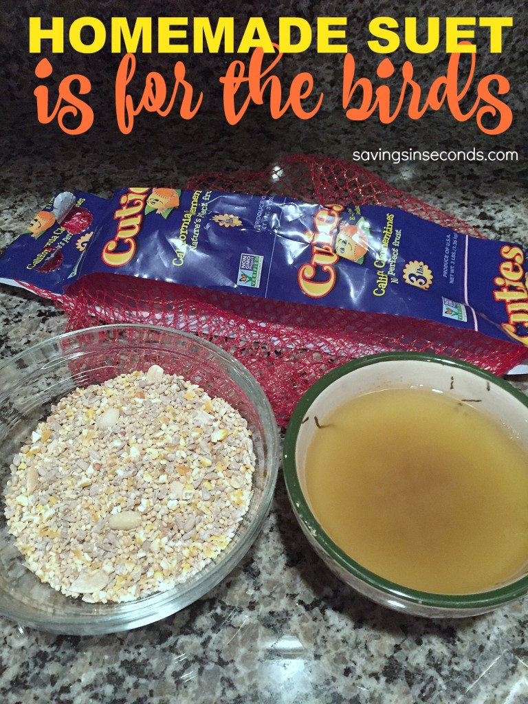 DIY Homemade Suet Cakes for birds - savingsinseconds.com