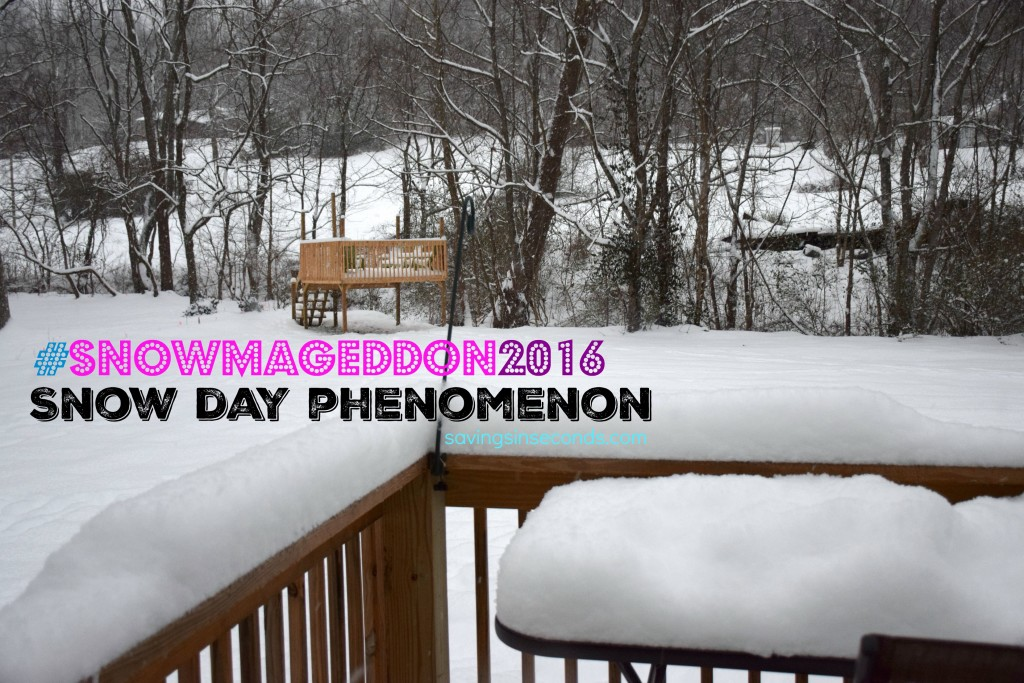 #Snowmageddon2016 Snow Day Phenomenon savingsinseconds.com