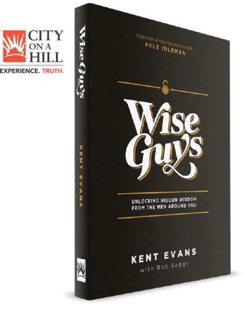 #WiseGuys #FlyBy #giveaway - savingsinseconds.com