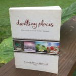 Dwelling Places by Lucinda Secrest McDowell SUMMER book review #LitfuseReads