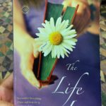 The Life List by Lori Nelson Spielman – one of my all-time favorites